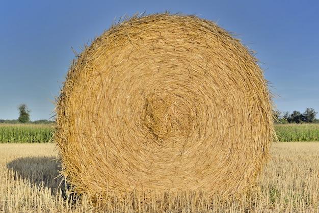 Sluit op een hooibaal in een veld schieten vanaf de voorkant onder de blauwe hemel