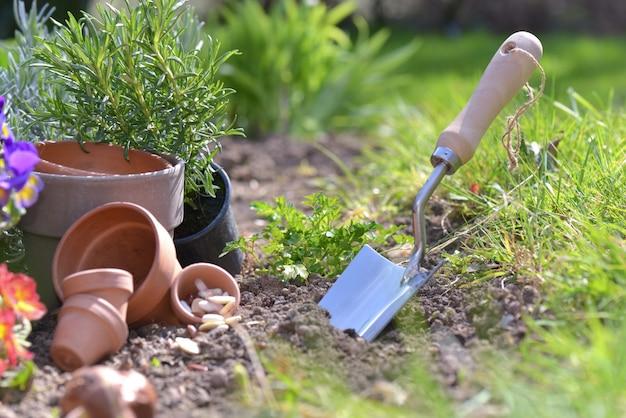 Sluit op showel aanplant in de grond van een tuin