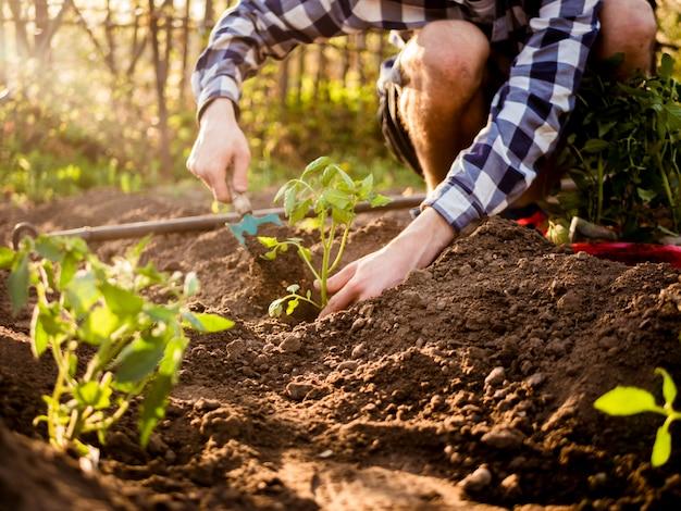 Sluit tuinman die in tuin aan een zonnige de lentedag omhoog werken
