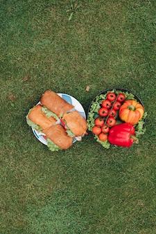 Smakelijke verse biologische groente en smakelijke sandwich op bord omgeven door groene grasweide bovenaanzicht. ecologie lekker eten klaar voor picknick in de buitenlucht in het zomerpark