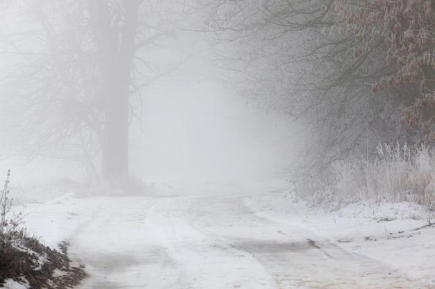 Smalle weg bij bewolkt weer tijdens mist of nevel, een weg bedekt met sneeuw in de winter