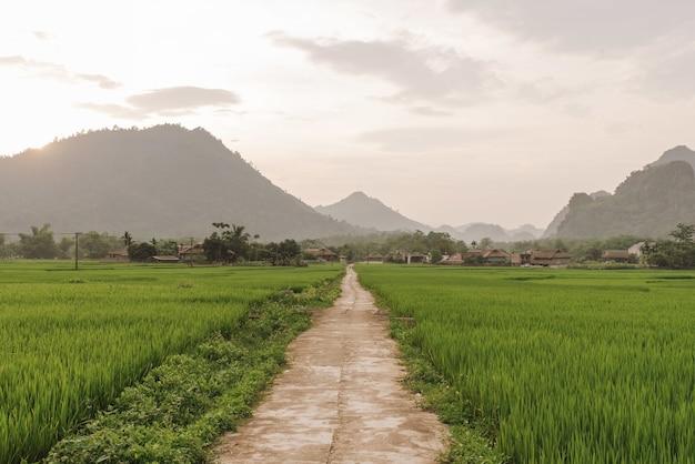 Smalle weg in een veld op de achtergrond van een dorp
