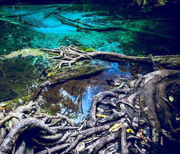 Smaragd blauw zwembad