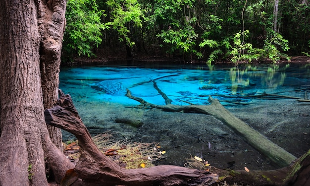 Smaragdgroene blauwe pool (sra morakot) in krabi-provincie, thailand