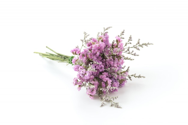 Snaar bloemen bloemblaadje