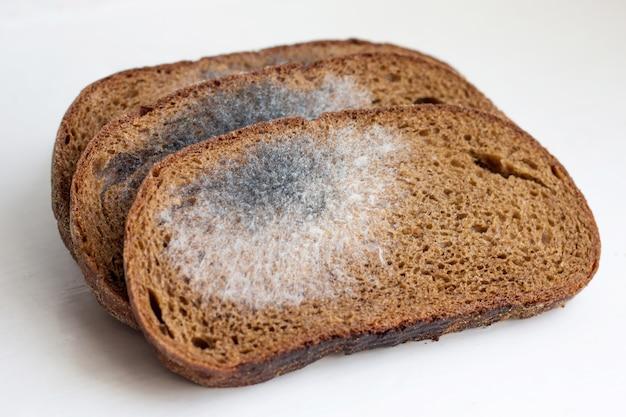 Sneetjes zwart brood, bedekt met schimmel. schimmel op brood