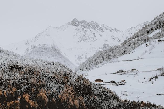 Sneeuw bedekt berg in de buurt van bos