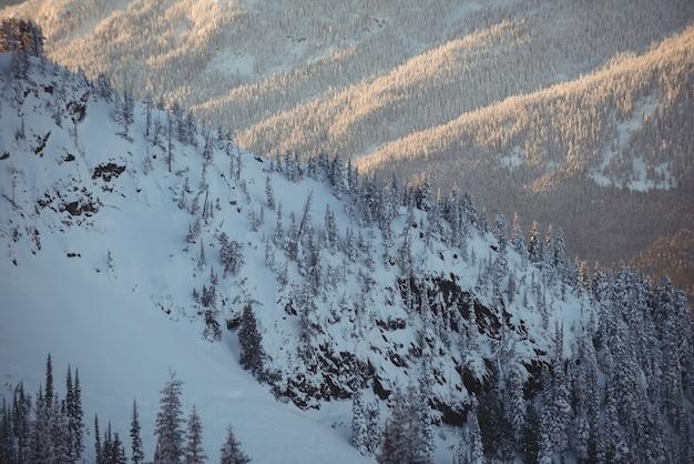 Sneeuw bedekte bergen tijdens de winter