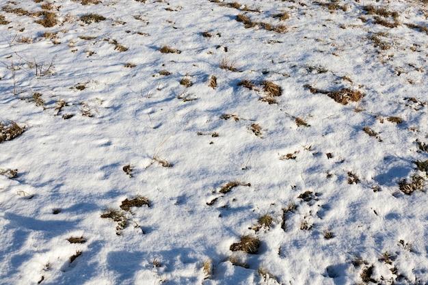 Sneeuw die in sneeuwlaag ligt na de laatste sneeuwval. foto in de winter in het veld.