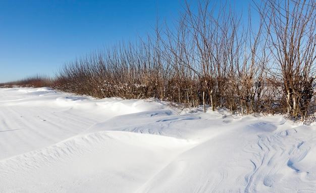 Sneeuw drijft liggend na een grote sneeuwval. winter seizoen.