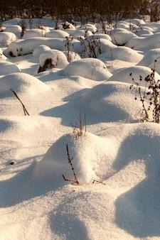 Sneeuw drijft