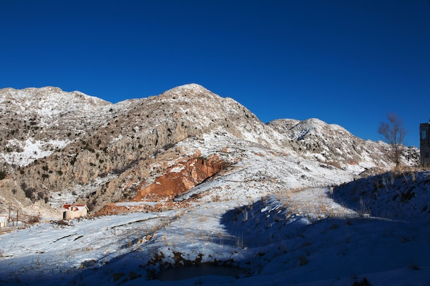 Sneeuw in bergen van libanon