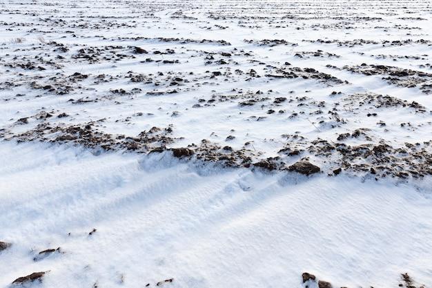 Sneeuw liggend in sneeuwlaag na de laatste sneeuwval, winter met weinig scherptediepte
