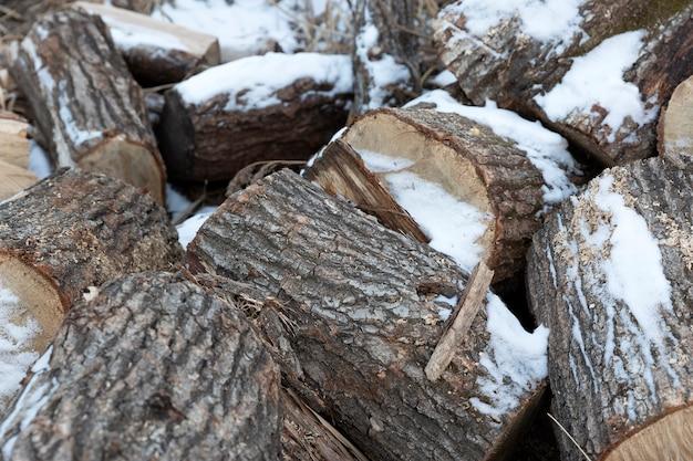 Sneeuw op brandhout in de winter