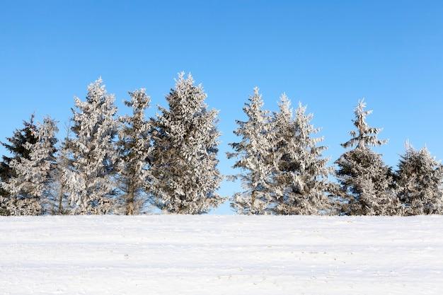 Sneeuwafwijkingen en zonlicht voor de zonsondergang