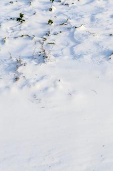 Sneeuwbanken van sneeuw in een veld