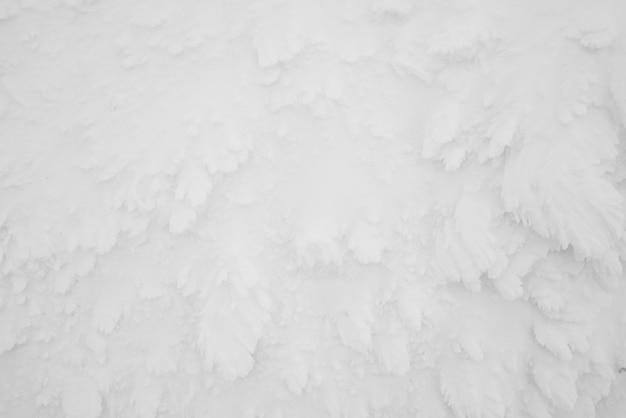 Sneeuwmonsters gebied mountain zao, japan.