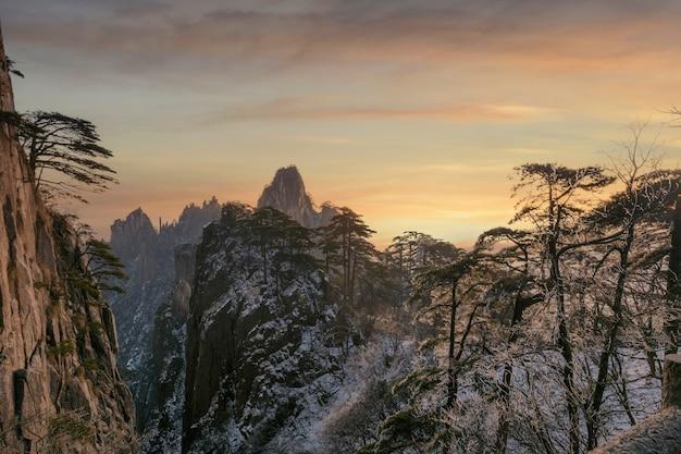 Sneeuwscène op de berg huangshan, dennenboom bedekt met sneeuw tijdens zonsopgang, china
