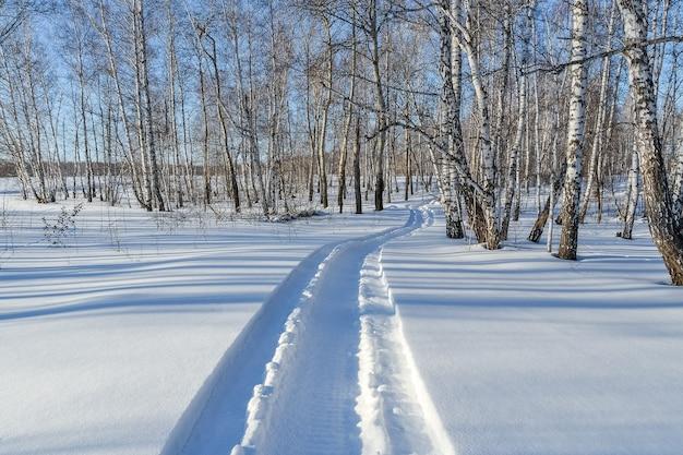 Sneeuwscootersporen in de sneeuw