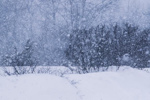 Sneeuwstorm op het platteland in de winter