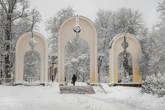 Sneeuwval in de stad. met sneeuw bedekte ingang van het stadspark. ma