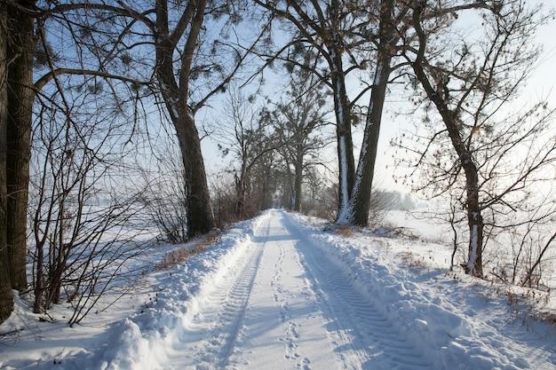 Sneeuwval in de winter