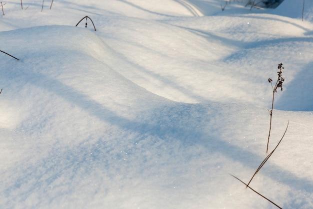 Sneeuwverstuivingen in het winterseizoen, stukken gras en boomtakken die door de sneeuw uitsteken, natuurlijke fenomenen die verband houden met het winterseizoen, ijzig weer na de sneeuw