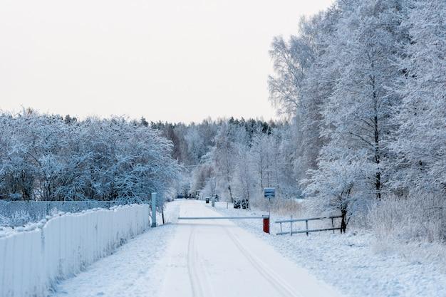 Sneeuwweg in de winter, berijpte bomen
