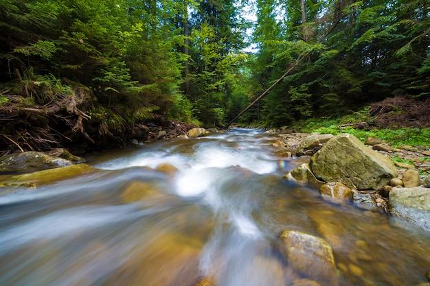 Snel stromende rivier door wild groen bos