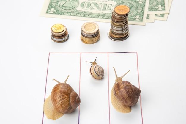 Snelheid om financieel welzijn te bereiken