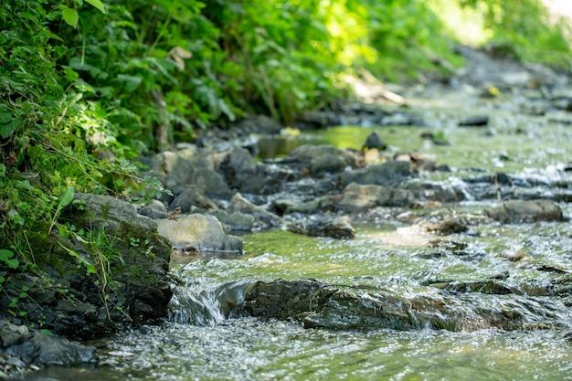 Snelle stroom in bos stroomt onder stenen.