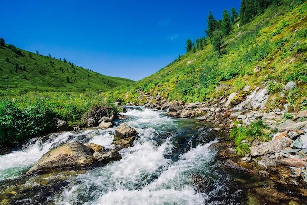 Snelle waterstroom van bergkreek onder keien in fel zonlicht in de vallei