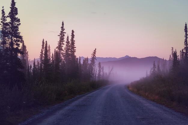 Snelweg in alaska, verenigde staten