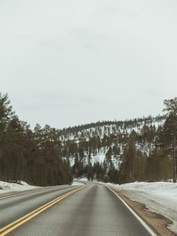 Snelweg in het midden van het besneeuwde bos onder de donkere hemel