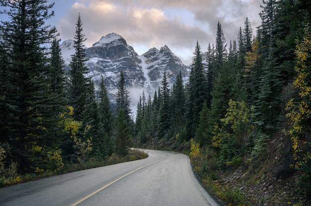 Snelweg met rotsachtige bergen in dennenbos op moraine meer in banff nationaal park