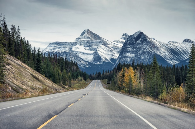 Snelweg met rotsachtige bergen in herfst bos