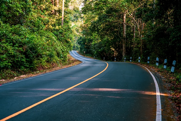 Snelweg weg met groene boom in khao yai national park.