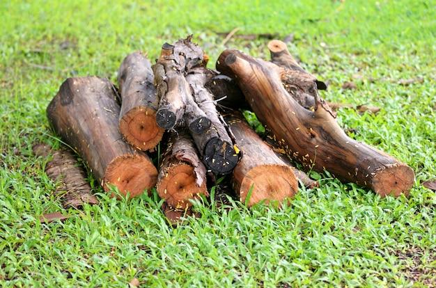 Snijd een boom