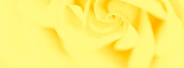 Soft focus abstracte bloemen achtergrond gele roos bloem macro bloemen achtergrond voor vakantie merk