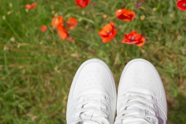 Sokken van witte sneakers op de achtergrond van een groene weide met klaprozen. zomersport en recreatie.