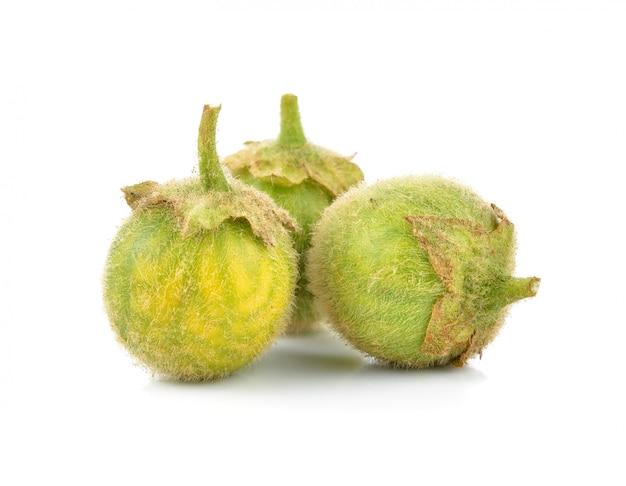 Solanum ferox op wit wordt geïsoleerd dat