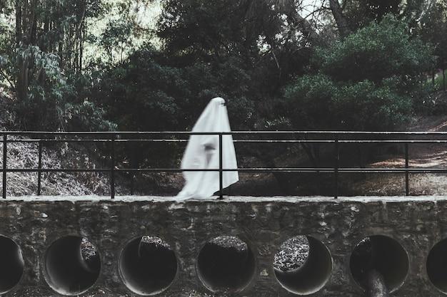 Sombere geest die op viaduct in bos loopt