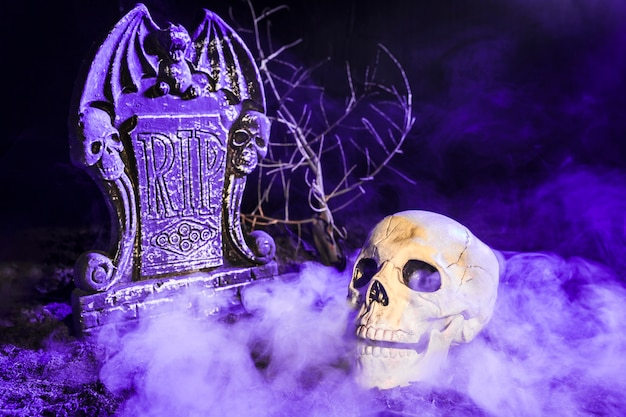 Sombere schedel dichtbij grafsteen in mist op grond