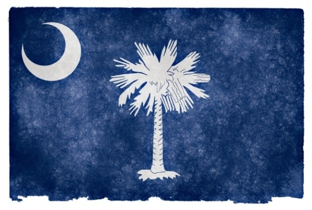 South carolina grunge vlag