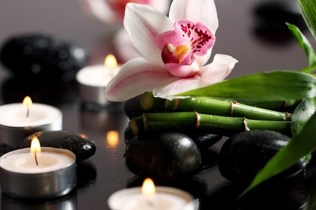 Spa en wellness