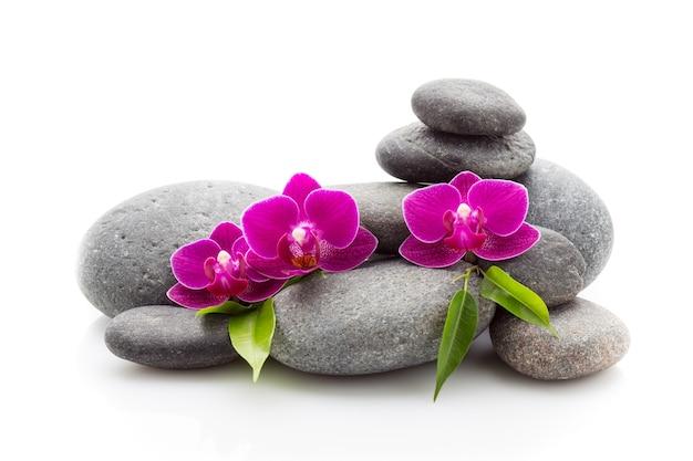 Spa masage stenen en orchidee geïsoleerd op het wit.