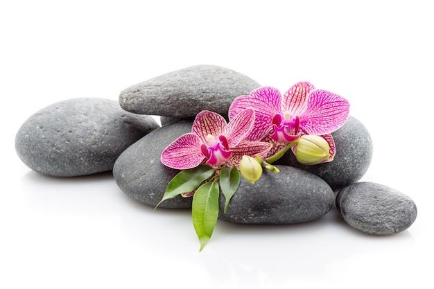 Spa masage stenen en orchidee geïsoleerd op het witte oppervlak.