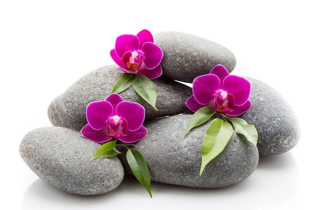 Spa masage stenen en orchidee geïsoleerd