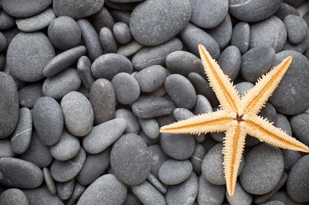 Spa stenen, zee strand. kust.