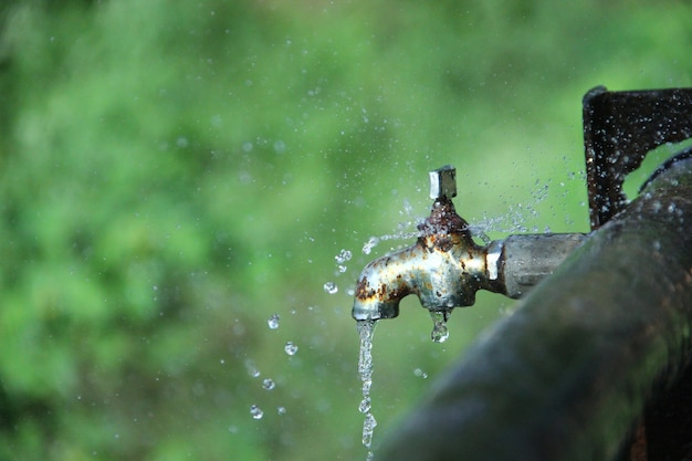 Spaar water, red levens